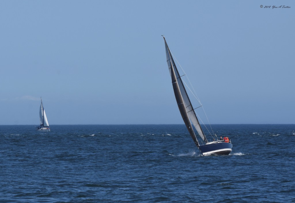 Swiftsure Yacht Race Begins